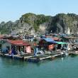Lang Ha Bay